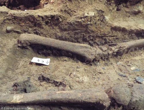 sépulture carolingienne